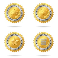 Set of best choice golden labels.