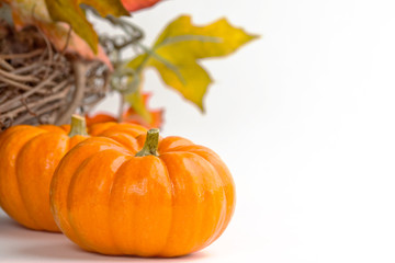 Miniature pumpkins with a fall wreath - space on right for text