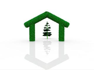 maison verte et arbre