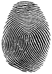 Empreinte Digitale - Fingerprint