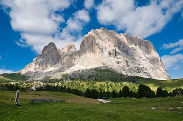 Sassolungo/Sasslong, Dolomites, Italy