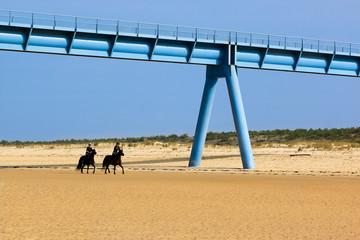 promenade à cheval sur la plage 2