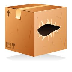 Carton déchiré