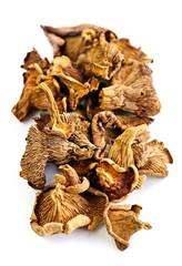 Dry chanterelle mushrooms