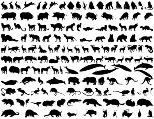 animals silhouette set