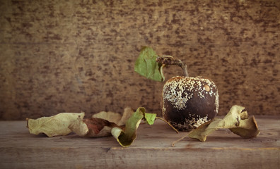 Old mold apple and dried leaves