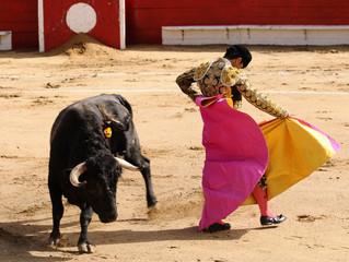 Poster de jardin Corrida Matador & Bull