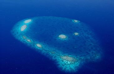 Récifs coralliens des maldives