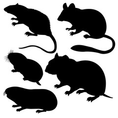 silhouettes rodent on white background