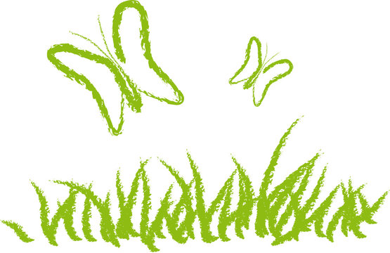 Papillons sur l'herbe - Environnement