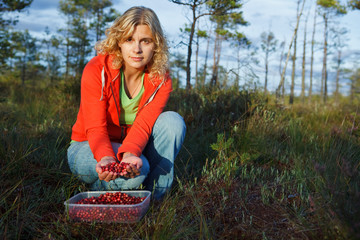 Woman picking wild organic cranberries