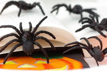 araignées sur livre