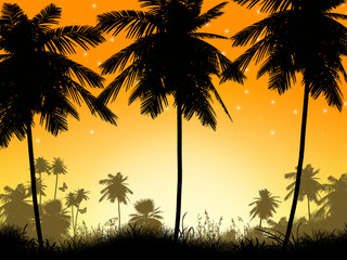 Silhouette of Palm Trees and a Sunset
