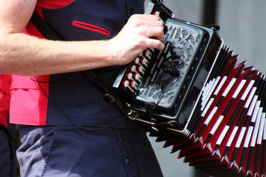 espectaculo musical . acordeon cromatico instrumento de viento