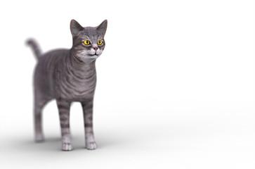 3d grey cat