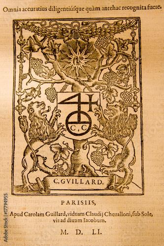 Medieval Latin Script 6