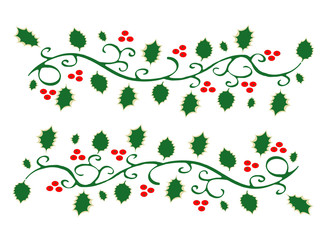 Holly and red berries vector