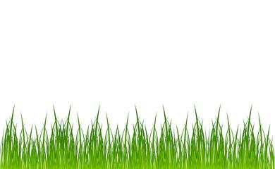 vector grass template