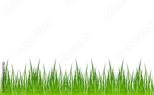 vector grass template\