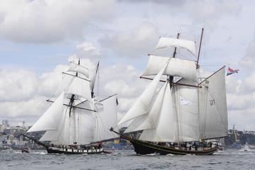 Goélettes en rade de Brest