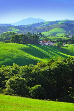 lumiere basque