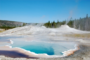 Yellowstone National Park Heart Spring with trees in background