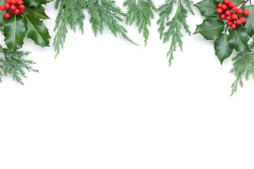 Christmas background with spruce tree and holly on white