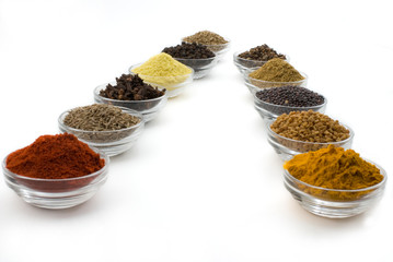 Indian Spices - Eleven Commonly Used Spices Isolated on White Ba