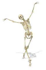 A Skeleton takes a Graceful Pose