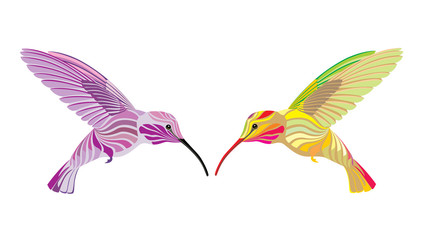 two hummingbird
