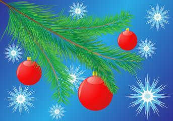 branch fir-tree
