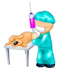 veterinarian gives a pet dog an injection