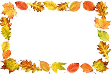 bilder und videos suchen herbstrahmen free clipart autumn leaves free clipart autumn leaves