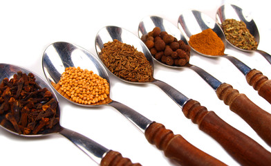 Collection of spices on wooden spoon isolated on white