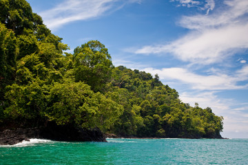 Rocky coastline and jungle near the sea