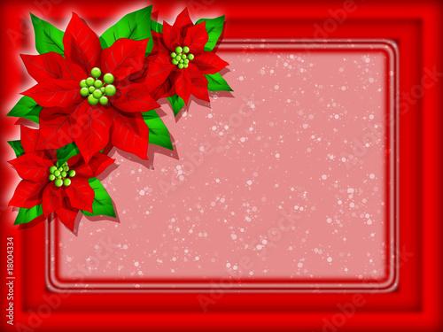 Stella Di Natale Auguri Christmas Card Fleur D Amour Noel Carte