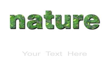 Fondo naturaleza