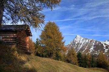 Alm im Herbst - mountain pasture in autumn