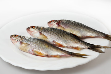 River fish on a plate