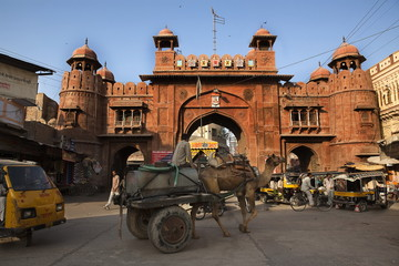 Fototapete - gate in Bikaner