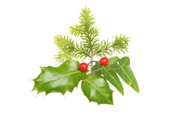 Christmas leaf motif