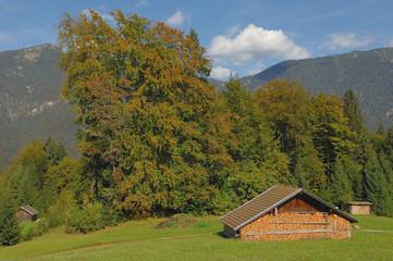 Wall Mural - Almhütte vor Herbstbäumen auf der Neuneralm