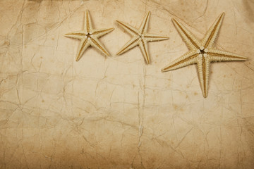 Papel con Estrellas de Mar