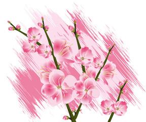 Flowers Illustration 07