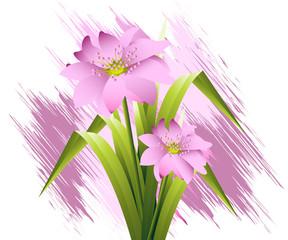 Flowers Illustration 23