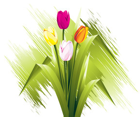 Flowers Illustration 24