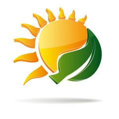 3D vector sun and leaf