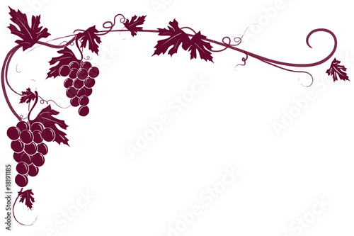 Sfondo Tralcio Uva Rossa Immagini E Vettoriali Royalty