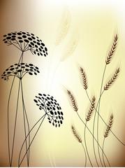Floral background - Flowers & Grain ears