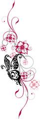 cherry blossom floral element, Kirschblüte, Blumen, Ranke